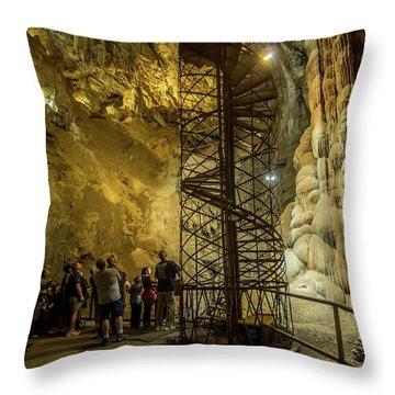 The Bat Cave Throw Pillow