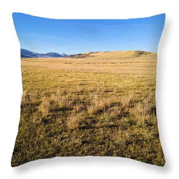Throw Pillow featuring the photograph The Beautiful Valley by Carl Young