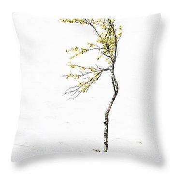 The Birch Tree Throw Pillow