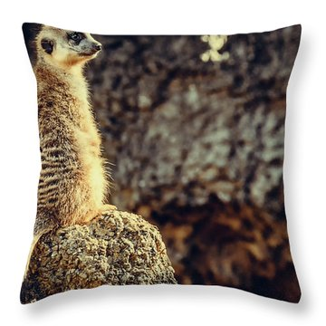 The Cat Who Does Not Meow... Throw Pillow