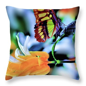 The Charm Of A Butterfly Throw Pillow