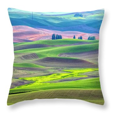 The Color Palette Of The Palouse Throw Pillow