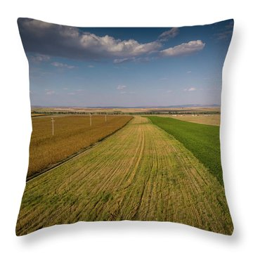 The Colored Fields Throw Pillow