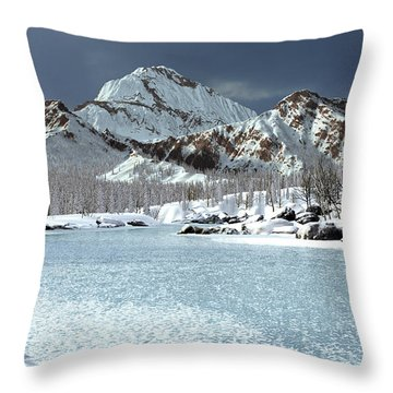 The Courtship Of Ice Throw Pillow