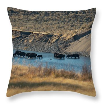 Throw Pillow featuring the photograph The Crossing by Pete Federico