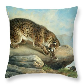The Curious Encounter, A Leopard And A Tortoise Throw Pillow