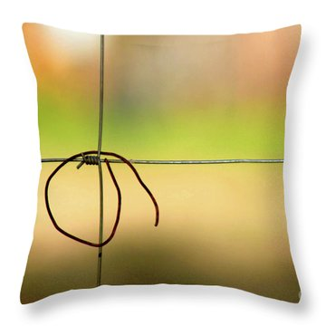 The Days Go By Throw Pillow