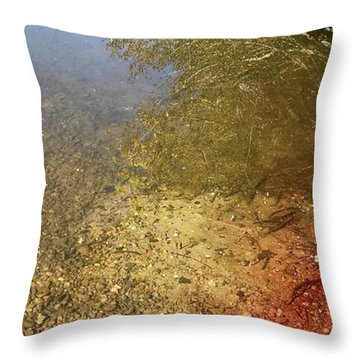 The Earth Is Bleeding Throw Pillow