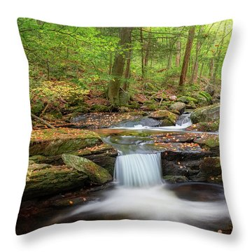 Throw Pillow featuring the photograph The Ethereal Forest 2 by Bill Wakeley