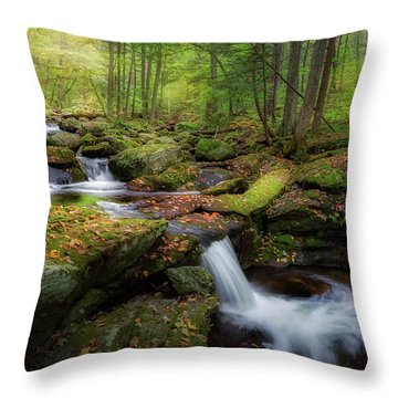 Throw Pillow featuring the photograph The Ethereal Forest by Bill Wakeley
