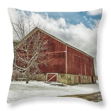Throw Pillow featuring the photograph The First Snow by Kim Hojnacki