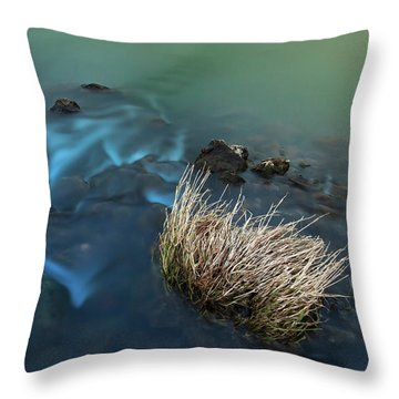 The Flow Of Time Throw Pillow