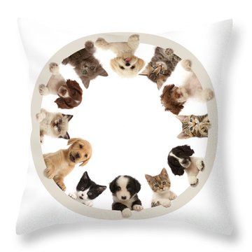 Throw Pillow featuring the photograph The Furcle Of Life by Warren Photographic