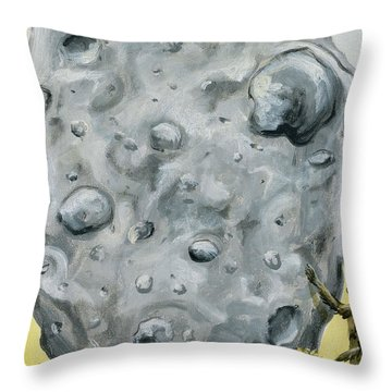 The Gift Of Fire Throw Pillow