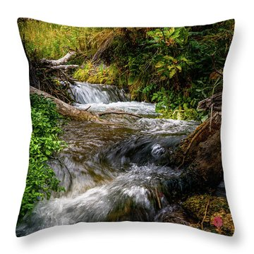 Throw Pillow featuring the photograph The Giving Stream by TL Mair