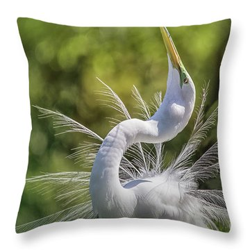 The Great White Egret Mating Dance Throw Pillow