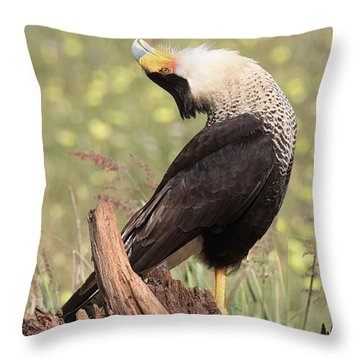 The Head Throw Throw Pillow