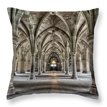 Sandstone Throw Pillows