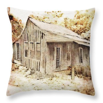 The Home Place Throw Pillow