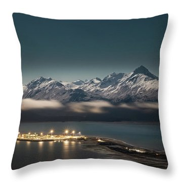The Homer Spit Throw Pillow
