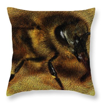 The Killer Bee Throw Pillow