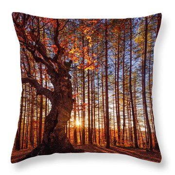 The King Of The Trees Throw Pillow