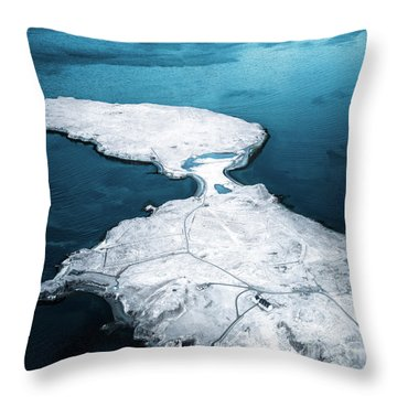 The Land Of Solitude Throw Pillow