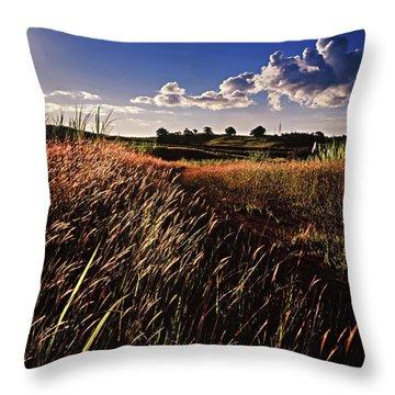 The Last Grassy Field, Trinidad Throw Pillow