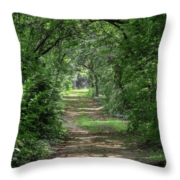 Throw Pillow featuring the photograph The Light Beyond by Dale Kincaid