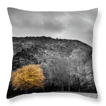 Throw Pillow featuring the photograph The Lone Yellow Tree by Greg Mimbs