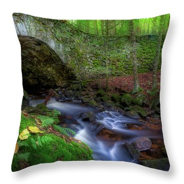 Throw Pillow featuring the photograph The Lost Bridge by Bill Wakeley