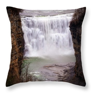 The Middle Falls Throw Pillow