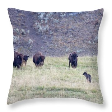 The Naming Of Spitfire Throw Pillow