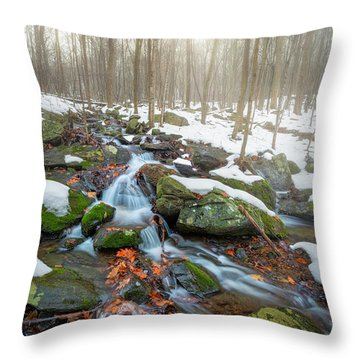 Throw Pillow featuring the photograph The November Forest by Bill Wakeley
