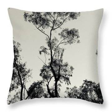 The Other One Was Getting Lonely Throw Pillow