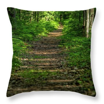 The Path Less Traveled Throw Pillow