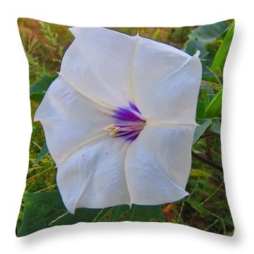 The Perfect Flower - Sacred Datura Throw Pillow