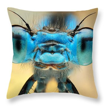 Tint Throw Pillows