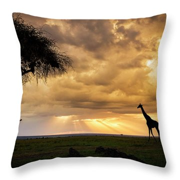 The Plains Of Africa Throw Pillow