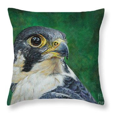 The Proud Peregrine....fastest Creature On The Planet Throw Pillow