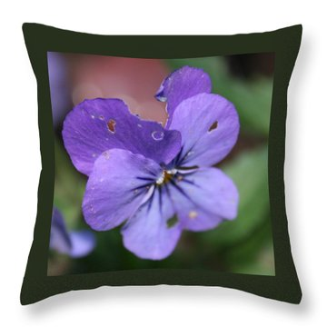 The Raggedy Viola Throw Pillow