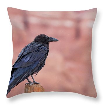 The Rainy Raven Throw Pillow
