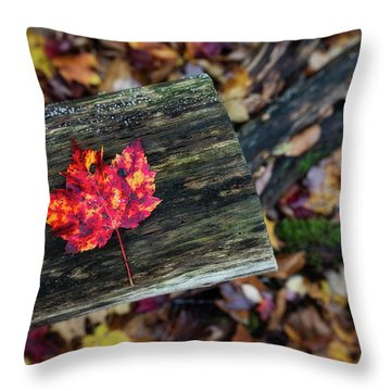 The Reason They Call It Fall Throw Pillow