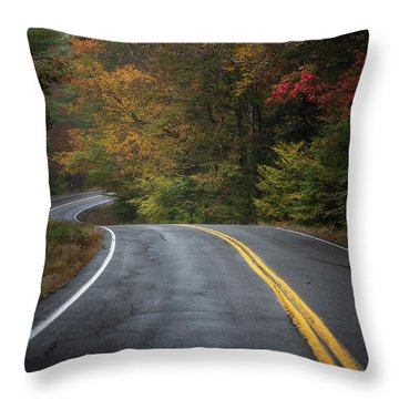 The Road To Friends Lake Throw Pillow
