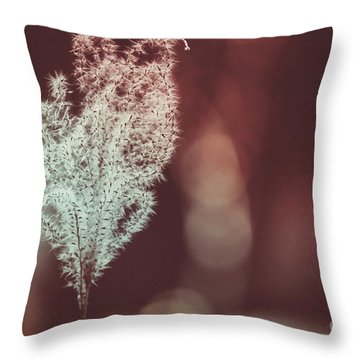 Throw Pillow featuring the photograph The Shine by Dheeraj Mutha