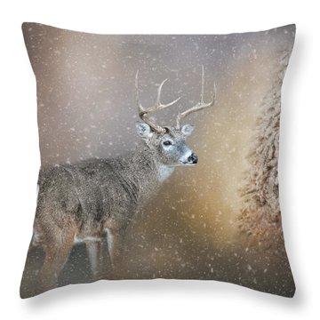 The Silence Of Christmas Morning Throw Pillow
