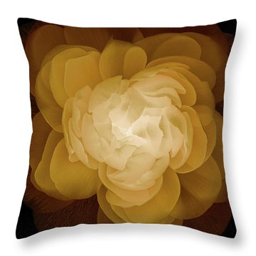 The Sorceress Number Three Throw Pillow