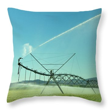 The Spray At The End Throw Pillow