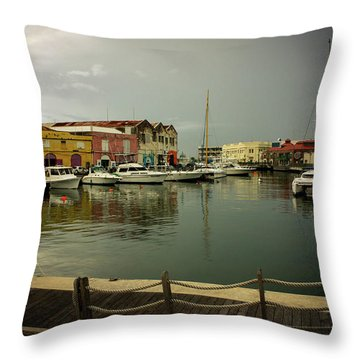 The Storm's A Coming. Throw Pillow