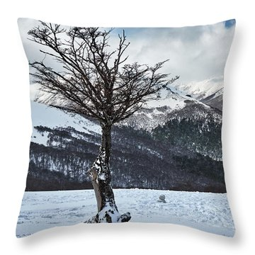 Dry Try On Frozen Mountainous Landscape In The Argentine Patagonia Throw Pillow
